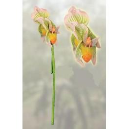 Fée des Orchidées de la collection fée des fleurs de Sheila Wolk