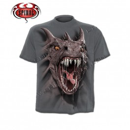 "T-shirt enfant ""Roar of the Dragon"""