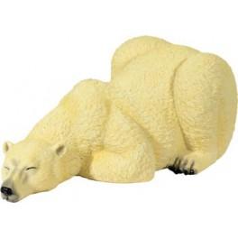 ours polaire se reposant