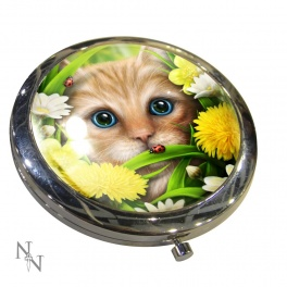 "Miroir de poche ""Summer Cat"" de Linda M. Jones"