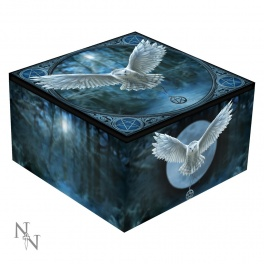"Coffret à bijoux avec miroir ""Awaken Your Magic"" d'Anne Stokes"
