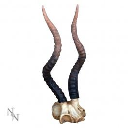 """Crane et Corne d'antilope """"Koudou"""" en résine"""