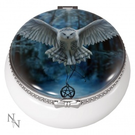 "Boite à pilule ""Awaken Your Magic"" de Anne Stokes"